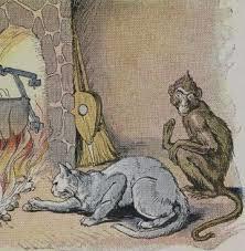 monkey-cat